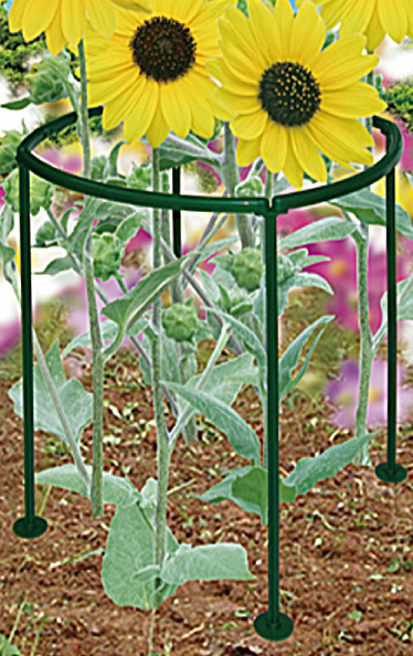 Garden Plant Supports GA700 Protect Plants from Wind, Rain