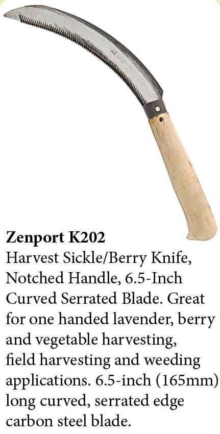 Zenport Sickle K202 Lavender Harvest Sickle/Berry Knife, Notched Handle, 6.5-Inch Curved Serrated Blade