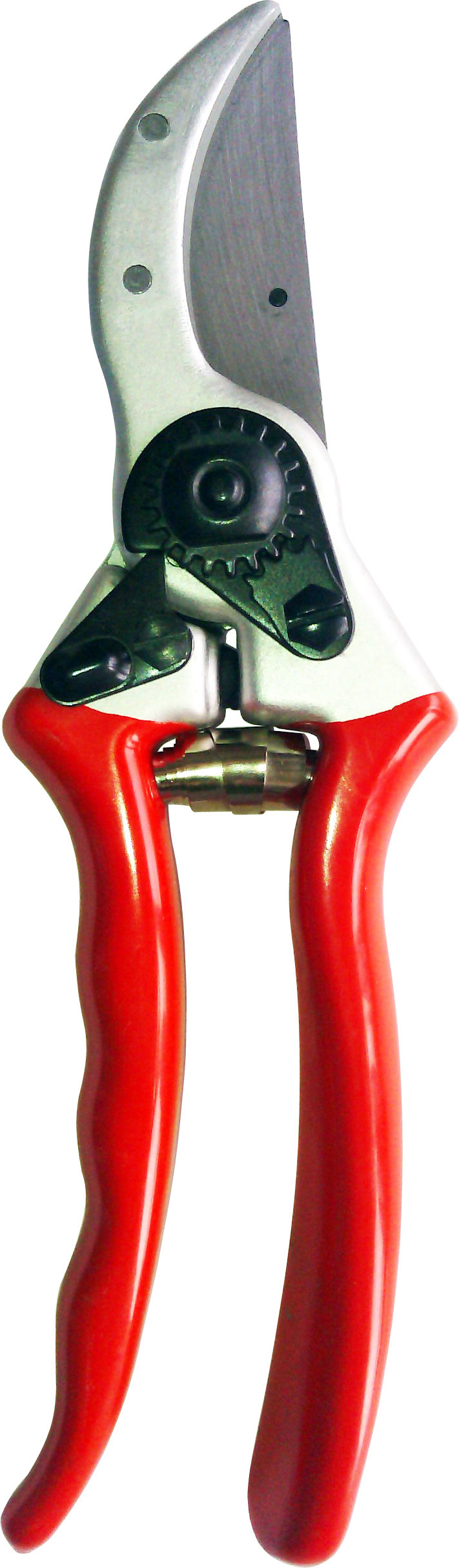 Zenport QZ402 Classic Professional Pruner, 1-Inch Cut, 8.5-Inch Long