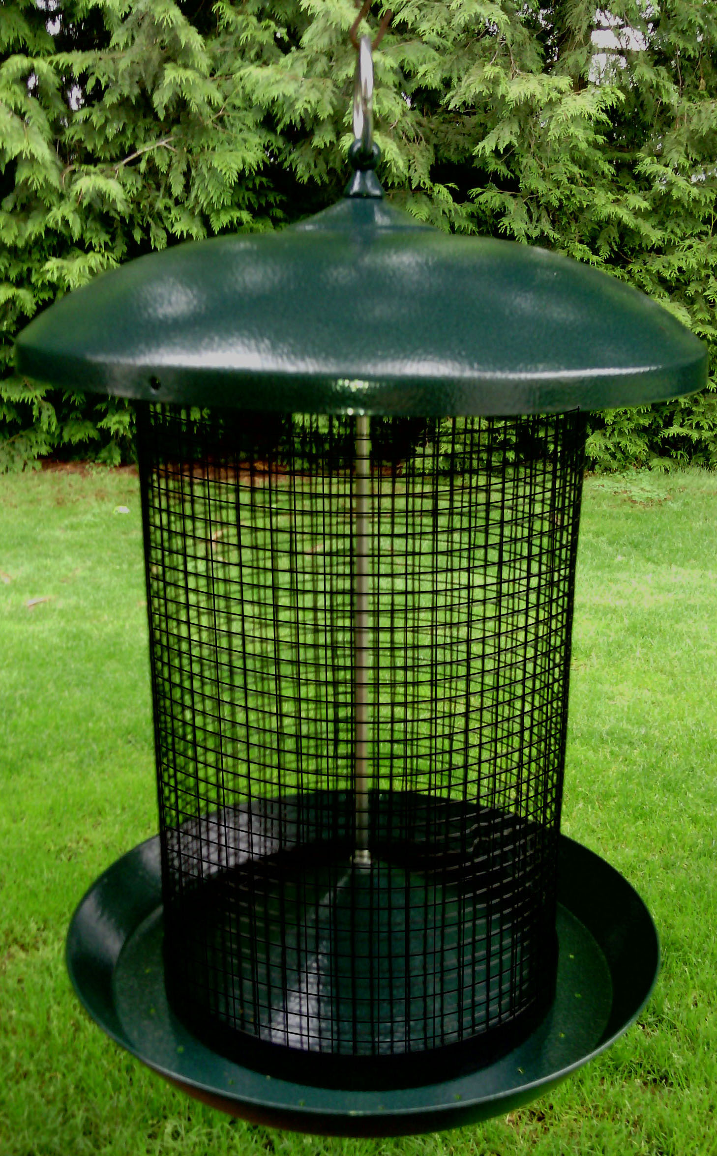 Zenport Bird Feeder Z203010 Sunflower Seed Screen Bird Feeder