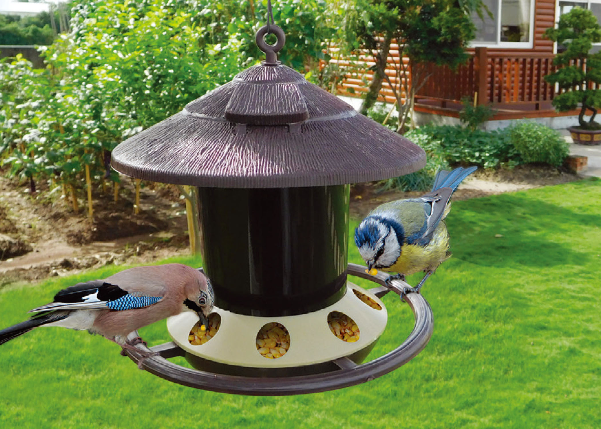 Zenport Bird Feeder D-450 1.23-lb Capacity