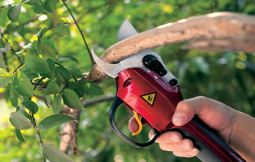 Zenport SCA Repair 1-Hour Service on Battery Powered Electric Shears