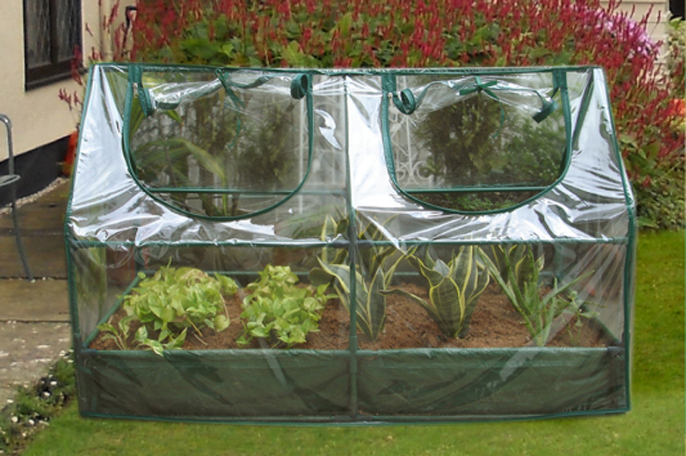 Zenport Mini Greenhouse SH3212A-BTP Garden Raised Bed and Cold Frame Greenhouse Cloche for Easy Access Protected Gardening