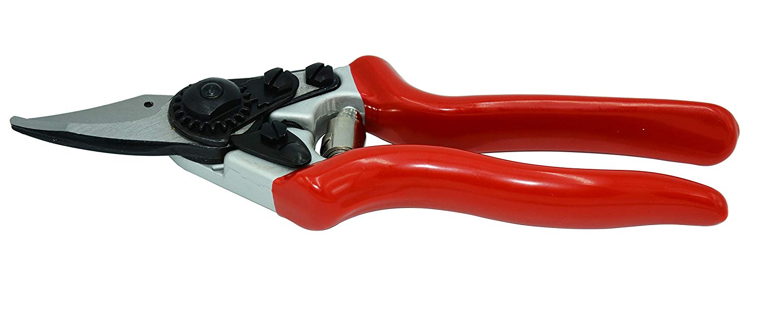 Zenport Pruner QZ406 Small Professional, .8-Inch Cut, 7.25-Inch Long